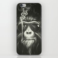 white iPhone & iPod Skins featuring Smoke 'Em If You Got 'Em by Dr. Lukas Brezak