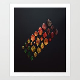 fall leaves arranged Art Print