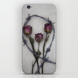 Three dried Roses II iPhone Skin
