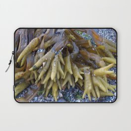 Seaweed bladders -  Bladder wrack Laptop Sleeve