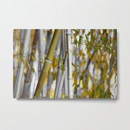 Bambuswald abstrakt Metal Print