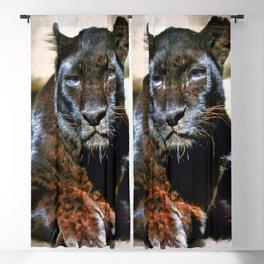 The Black Leopard Blackout Curtain