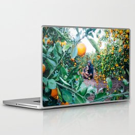 Valencian Orange Grove Laptop & iPad Skin
