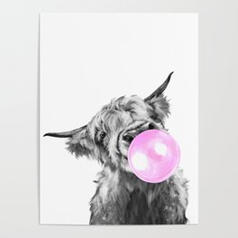 Bubble Gum Highland Cow Black and White Poster
