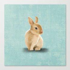 Portrait of a little bunny Canvas Print