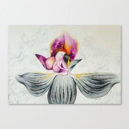 Unveiling Canvas Print