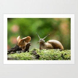 Wifi Snail Art Print