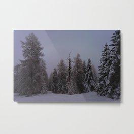 Under A Winterspell Metal Print