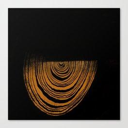 Twenty One Canvas Print