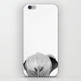 Elephant Back Photo | Black and White iPhone Skin