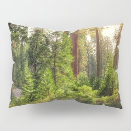 Images California USA Kings Canyon National Park Nature Spruce Parks forest Trees park Forests Pillow Sham