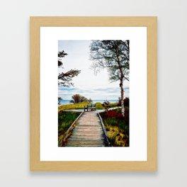 Lone Bench 1 Framed Art Print