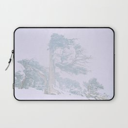 Ancient Tree in wind, snow, and fog on Windy Ridge, Colorado Laptop Sleeve