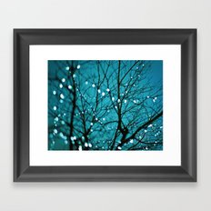 tree photograph. Wonder Framed Art Print