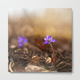 Come with me  Hepatica Forest #decor #society6 Metal Print