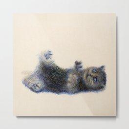 cat1 Metal Print