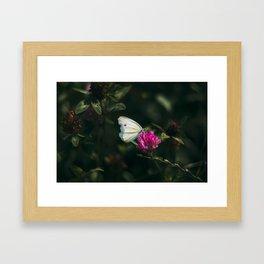 flower photography by Ed Leszczynskl Framed Art Print