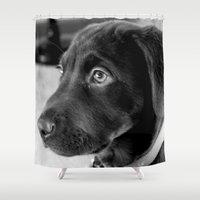 puppy Shower Curtains featuring puppy by smittykitty