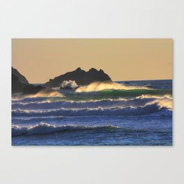 True Colors Canvas Print