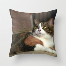 To Be a Cat Throw Pillow
