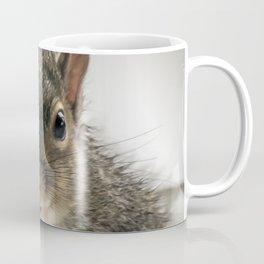 Adorable Praying Squirrel..Feed ME!! Coffee Mug