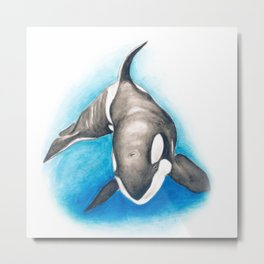 Orca Whale Blue Metal Print