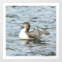 Baby loon all grown up Art Print