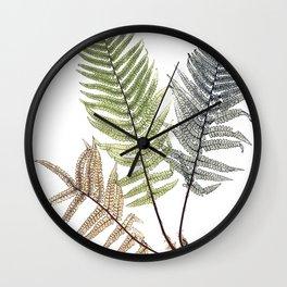 Ferns Wall Clock