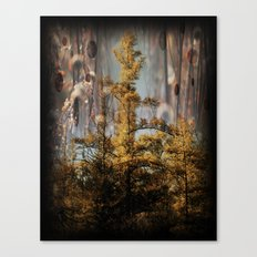 Swampy Forest Of Dreams Canvas Print