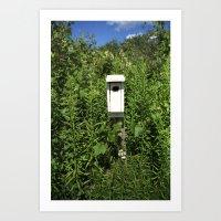Bird House. Art Print