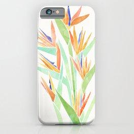 Birds of Paradise ~ tropical bouquet iPhone Case