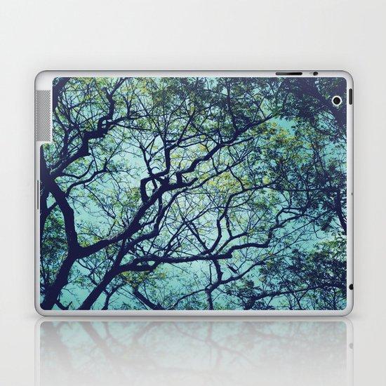 Rain Tree Laptop & iPad Skin