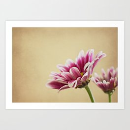 Flowers are the music of the ground Art Print