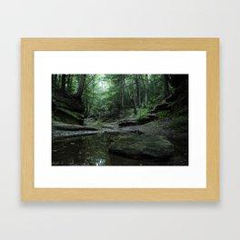 Hocking Hills Framed Art Print