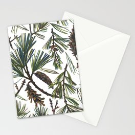 Pine Bough Stationery Cards