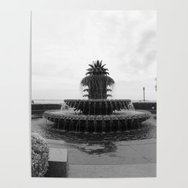 Pineapple Fountain Charleston River Park Poster