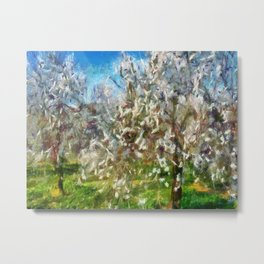 Almond Orchard Blossom Metal Print