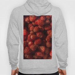 Wild Strawberries Hoody