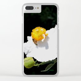 Matilija Poppy Clear iPhone Case