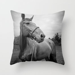 Horses of Instagram Throw Pillow