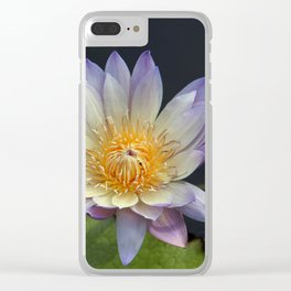 Golden Hue Clear iPhone Case