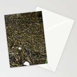 floating wood texture Stationery Cards