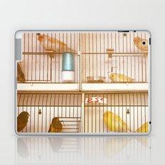 Marche Aux Oiseaux 2 Laptop & iPad Skin