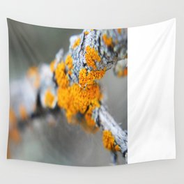 Mold Wall Tapestry