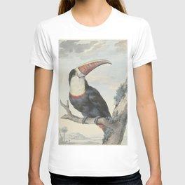 Aert Schouman - Red-Billed Toucan T-shirt