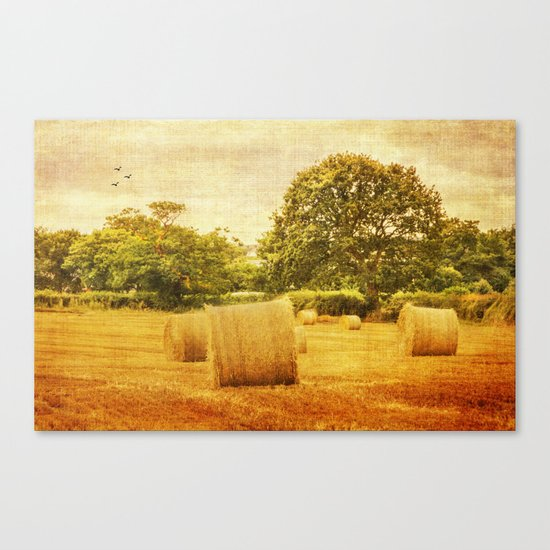 A day in the countryside Canvas Print