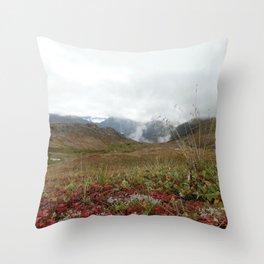Mountain Crisp Throw Pillow