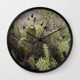 Moody Prickly Pear Wall Clock