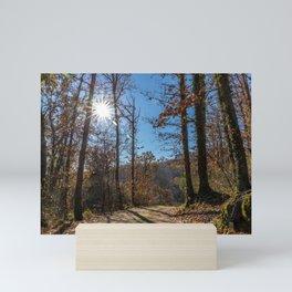 A beautiful day in the woods Mini Art Print