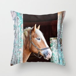 """""""Beauty in the Barn"""" Throw Pillow"""